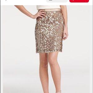 Women's Size 8 Ann Taylor Teardrop Sequin Skirt